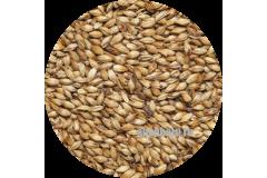 Солод карамельный ячменный Caramel EBC 150 (Viking Malt) 1кг