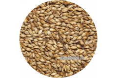 Солод карамельный ячменный Caramel EBC 100 (Viking Malt)  1кг