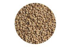Солод пшеничный Chateau wheat blanc EBC 5-8 (Castle Malting)